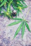 Cannabiskruid en bladeren voor behandelingsbouillon, tint, uittreksel, olie stock afbeelding