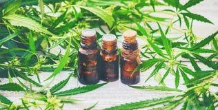Cannabiskruid en bladeren voor behandelingsbouillon, tint, uittreksel, olie royalty-vrije stock foto