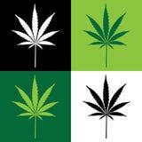 cannabisleaf Royaltyfri Fotografi