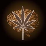 cannabisleaf Royaltyfri Bild