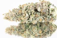 Cannabismacro 86050121 Stock Afbeelding