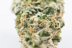 Cannabismacro 86051935 Royalty-vrije Stock Foto