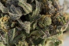 Cannabismacro 86052355 Royalty-vrije Stock Foto