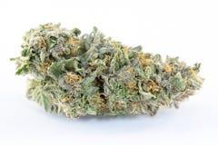 Cannabismacro Royalty-vrije Stock Foto's