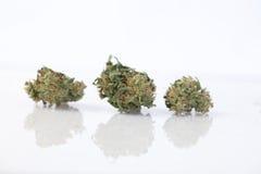 Cannabismarijuana и конопля марихуаны текстуры Законное лекарство Стоковая Фотография