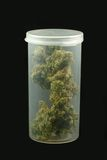 cannabisrecept Arkivbild