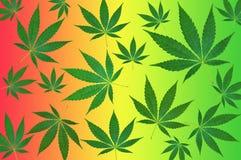Cannabissidor på färgrik bakgrundsmodell Arkivfoto