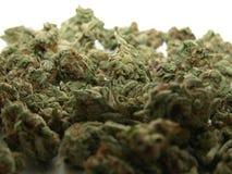 cannabisstapel royaltyfri fotografi