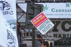2015 Cannabisverzameling 23 Royalty-vrije Stock Foto's