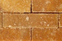 Canne à sucre Images stock
