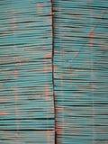 Canne blu Fotografie Stock