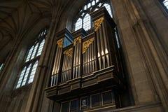 Canne d'organo Fotografie Stock