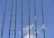 Canne da pesca Fotografia Stock