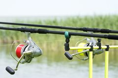 Canne da pesca al Balaton Fotografie Stock