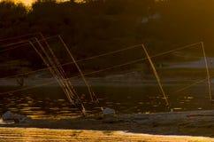 Canne da pesca al tramonto fotografia stock libera da diritti