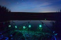 Canne da pesca alla notte fotografia stock