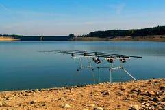 Canne da pesca della carpa Immagine Stock Libera da Diritti