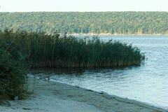 Canne da pesca e attrezzatura per la pesca costa sulla sponda del fiume, lago Fotografia Stock
