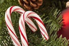 Canne de sucrerie de fête de menthe poivrée de Noël Images libres de droits
