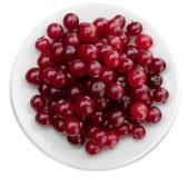 Canneberges mûres rouges du plat blanc Photographie stock