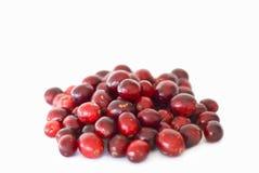 Canneberges rouges fraîches Image libre de droits