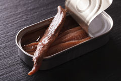 Canned anchovy fillets macro on a slate board. Horizontal. Anchovy fillets in tin macro on a slate board. Horizontal stock images
