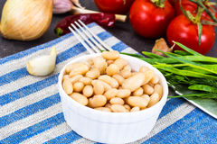 Canned beans with olive oil and garlic in white salad bowl. Studio Photo Stock Image