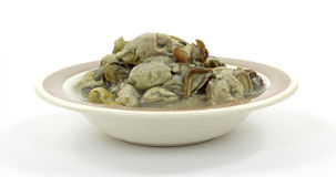 Canned Boiled Oysters Front View Stock Photography