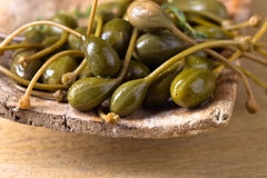 Canned capers in wooden dish . Canned capers in wooden dish on a kitchen table Stock Photo