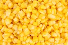 Canned corn background. Royalty Free Stock Photos