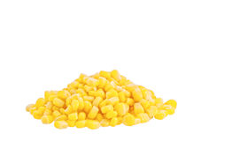 Canned corn Stock Image