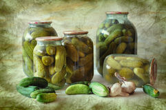 Canned cucumbers Royalty Free Stock Images