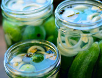 Canned cucumbers process. Stock Images