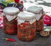 Canned eggplant slices in spicy vegetable sauce Stock Image