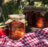 Canned eggplant slices in spicy vegetable sauce in glass jars Royalty Free Stock Photo