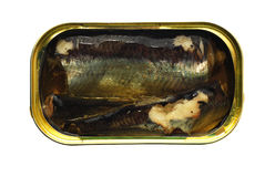 Canned fish Stock Image