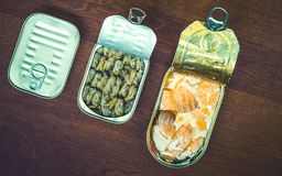 Canned fish Royalty Free Stock Photos