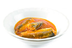 Canned fish in tomato sauce Stock Images