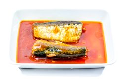 Canned fish in tomato sauce on white background Royalty Free Stock Image