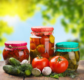 Canned and fresh vegetables Royalty Free Stock Image