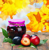 Canned fruit compote and fresh plums Stock Images