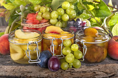 Canned fruits Stock Photos