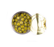 Canned green peas. Stock Images
