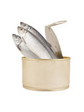 Canned herring fish isolated Royalty Free Stock Images