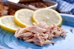 Canned mackerel Stock Photo
