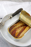 Canned mackerel in brine Stock Images