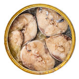 Canned mackerel fish in its own juice isolated Royalty Free Stock Photos