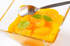 Canned Mandarin Oranges Stock Image