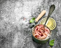 Canned meat in a tin can. On a rustic background Stock Image