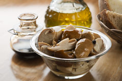 Free Canned Mushrooms Royalty Free Stock Image - 30293646